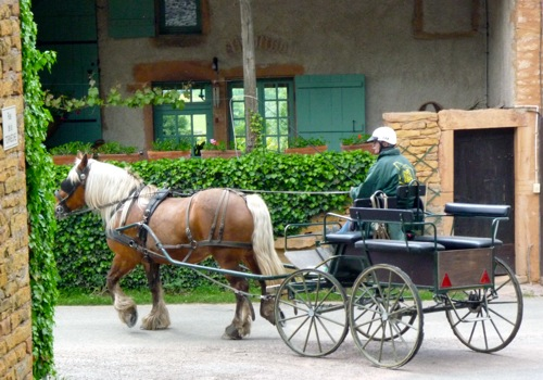 horse drawn cart in Ameugny